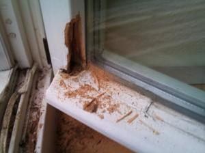 Sehr Holzfenster | Fenster Reparatur Berlin PK57